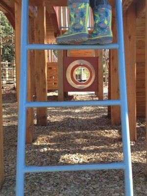 ladder (2)