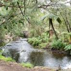 Badgers Weir